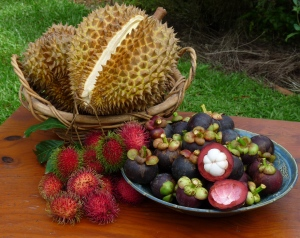 Tropical Fruit, Mangosteen, Durian, Rambutan: Wild Wings & Swampy Things, Daintree