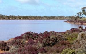 Lake Hardy1