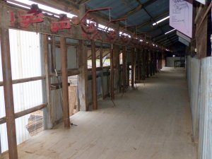Shearing stands
