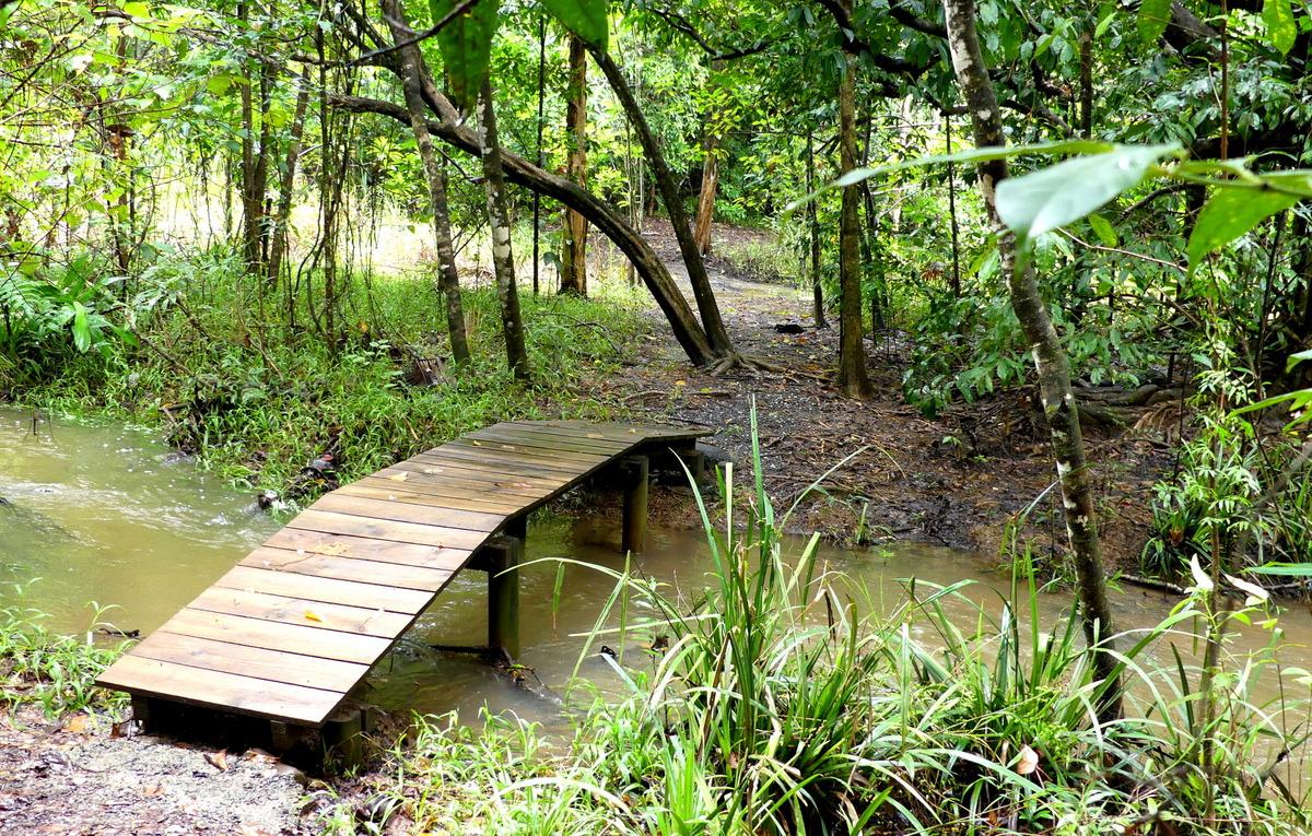 1-bridge-over-effie-creek